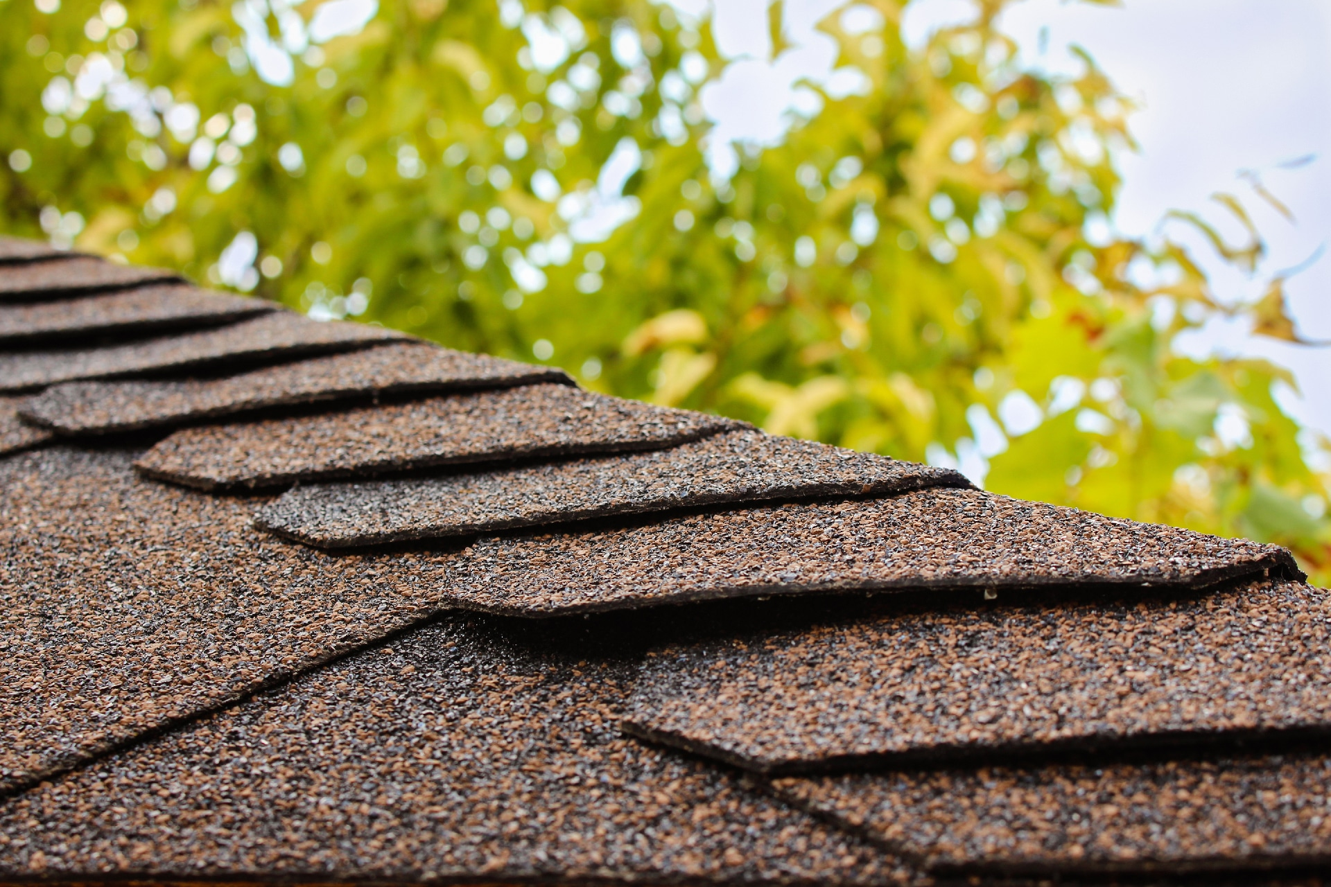 Macro shot of asphalt shingles on a sloped roof.